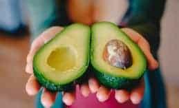 avocado_katava