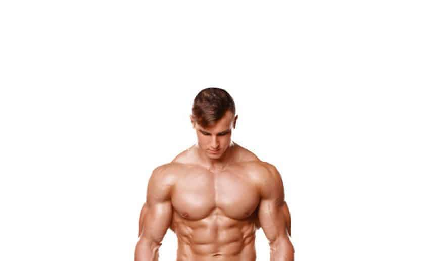 אימון פלג גוף עליון
