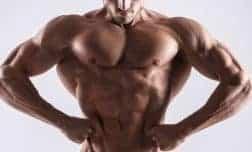 אימון TRX: לגב אסטטי, חזק ושרירי