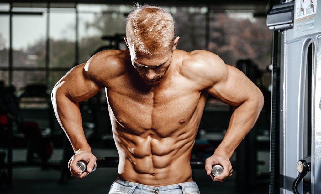 גבר בלי חולצה עם שרירים בולטים ואחוז שומן נמוך, מחזיק מתקן מקבילים